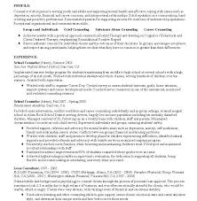 Download Counselor Resume