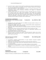Pl Sql Developer Resume Sample Programmer Resume Developer Resume Inspiration Resume For Oracle Developer