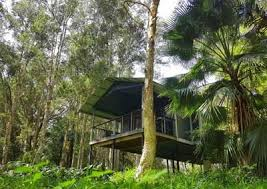 Treehouse Restaurant In Mossman Cairns And Tropical North Treehouse Accommodation Nsw