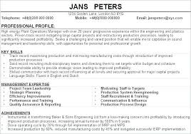 Resume Sample Summary Resume Profile Summary Example Sample Personal