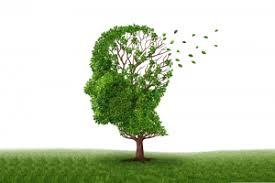 Afbeeldingsresultaat voor dementie ouderen