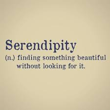 Quot Definition Enchanting Quot Definition Amusing Best 48 Serendipity Movie Quotes Ideas On