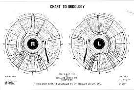 Dr Bernard Jensen Iridology Chart Bernard Jensen San Diegos Expert On Irises San Diego Reader