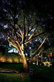 outdoor lighting perspective. Delectable Outdoor Tree Lights Ideas Creative Design Pinterest Outdoor Lighting Perspective