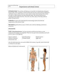 Body Organization Lab