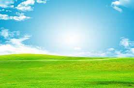 grass and sky backgrounds.  And Blue Sky Green Grass Background Inside Grass And Sky Backgrounds D
