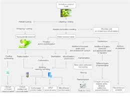 Coconut Oil Production Flow Chart Flow Diagram Of The Different Methods Of Processing Young
