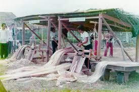 「マニラ麻のパルプ化」の画像検索結果