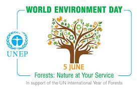 tree planting for world environment day ark eden join