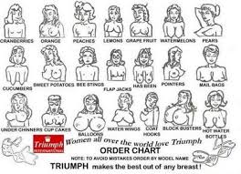 Funny Pictures Gallery Triumph For Any Breast