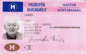 A License Driving Hungarian Quality Sale For Buy Online -