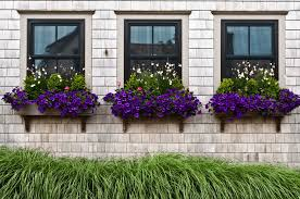 Decorative Planter Boxes Window Planter Boxes With Purple Flowers Decorative Outdoor 44
