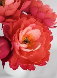 Peony Paper Flower Diy Paper Coral Charm Peony Design Sponge