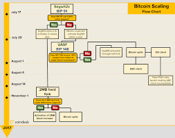 Bitcoin Option Chart Bitcoin Scaling Flow Chart Cryptocurrency In 2019