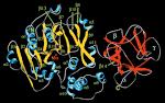 n-acetylgalactosaminyltransferases