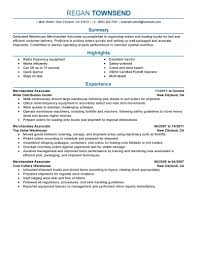 Visual Merchandiser Resume Pretty Merchandising Resume Examples Pictures Inspiration 94
