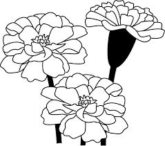 夏の花2 20 マリーゴールド 花の無料イラスト素材 イラストポップ