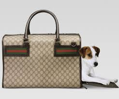 Replica Designer Pet Carrier Dear Santa I Need This Gucci Dog Carrier Thank You Dog