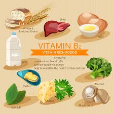 Vitamin B2 Vitamins And Minerals Foods Vector Flat Icons