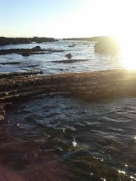 11 Best Tide Pools Images In 2016 California Beach Tide