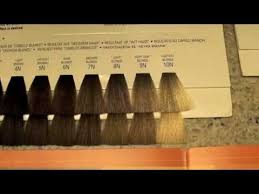 Hair Colour Level Chart Cosmetology Haircoloring 3 Color Levels And Tones