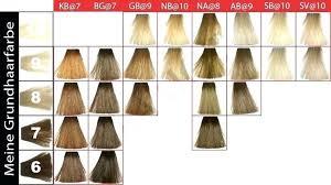 Goldwell Topchic Blonde Color Chart Www Bedowntowndaytona Com
