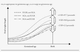 Prenatal Growth Chart Demonstrating Development Of Sga Vs