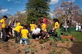 Michelle Obama Kitchen Garden White House Vegetable Garden Wikipedia