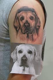 Tetování Zvířata Ivjpg Tetování Tattoo