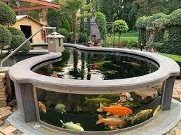 fish ponds backyard koi pond