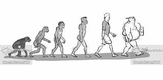 Human Evolution Cartoons And Comics Funny Pictures From