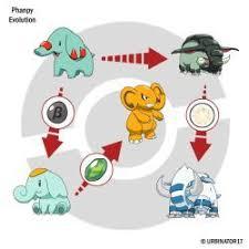 Phanpy Evolution By Urbinator17 Kids Rugs Evolution