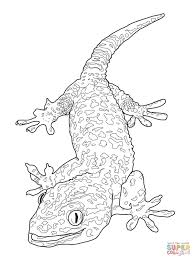 Small Picture Coloring Pages Animals Tangled Coloring Pages For Kids