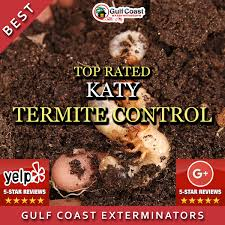 katy pest control. Interesting Katy Pest Control Katy TX Gulf Coast Exterminators Are Top Rated Termite  Inspection And Control Experts Inside