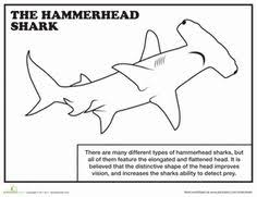 Small Picture hammerhead shark colouring page for kids Pinterest