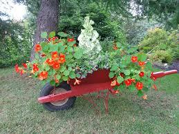 botanical garden wheelbarrow