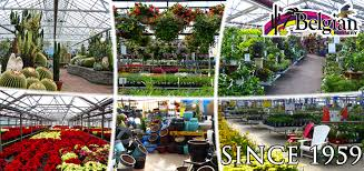 belgian nursery has been a unique flower world since 1959 explore belgian s many greenhouses including 1 acre of annuals grown on site the perennial