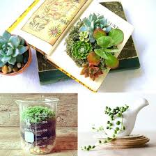 where to buy office desk. Office Desk Plants Cute And Planters Where To Buy Singapore S