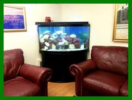 fish tank stand design ideas office aquarium. Fish Aquarium Home Design Stunning Tank Stand Ideas Office View In N