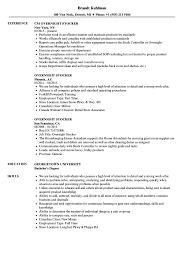 Overnight Stocker Resume Samples Velvet Jobs Site Image Stocker