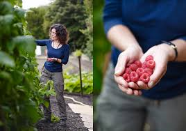 Kitchen Garden Foods Kitchen Garden Experts Jason Ingram Bristol Photographer Of