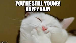 grumpy cat birthday quotes.  Birthday Happy Bday Intended Grumpy Cat Birthday Quotes A