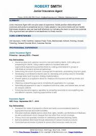 Insurance Agent Resume Www Sailafrica Org