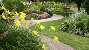 Small Picture How To Design Your Garden In Dry Climate And Reduce The Size Of