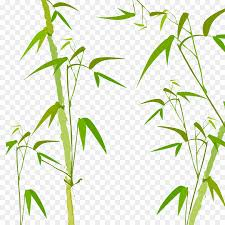 bamboo watercolor painting poster grass family leaf png