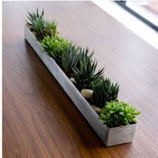 Image Brick Stainless Steel Planter Box Pinterest 12 Best Planters indoor Images Trough Planters Window Boxes