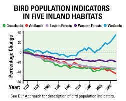 Birds Are On The Rebound Or Not Mogreenstats