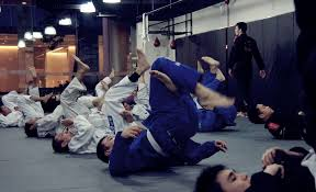 9 Reasons Why <b>Brazilian Jiu</b>-<b>Jitsu</b> Is The Perfect Martial Art - Evolve ...