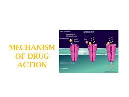 Image result for images for types of drug mechanism free download