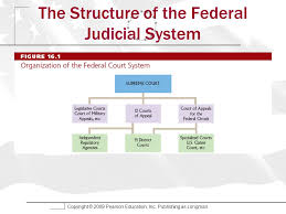 The Federal Courts Chapter 16 Edwards Wattenberg And